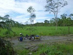Premier sentier d'Amazonie